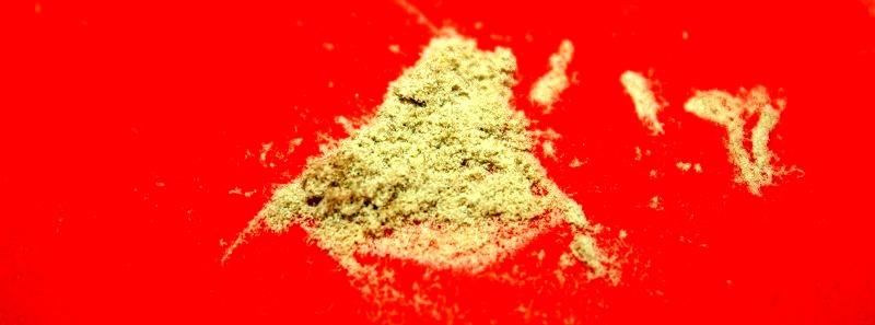 Trichomes de cannabis extraits avec le Hash Maker