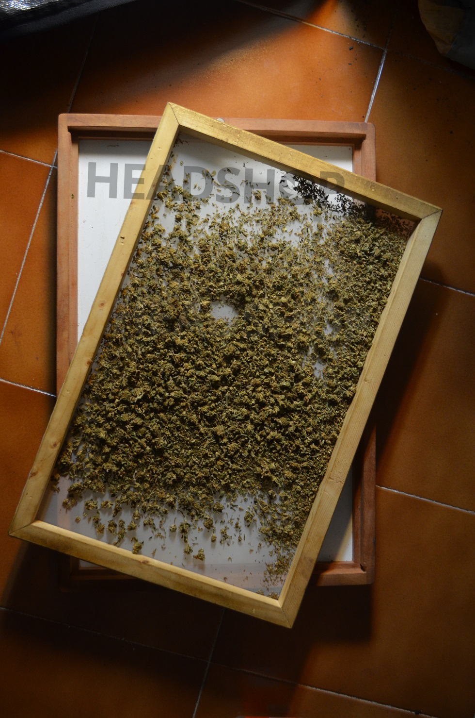 Tan Tam rempli de cannabis résineux